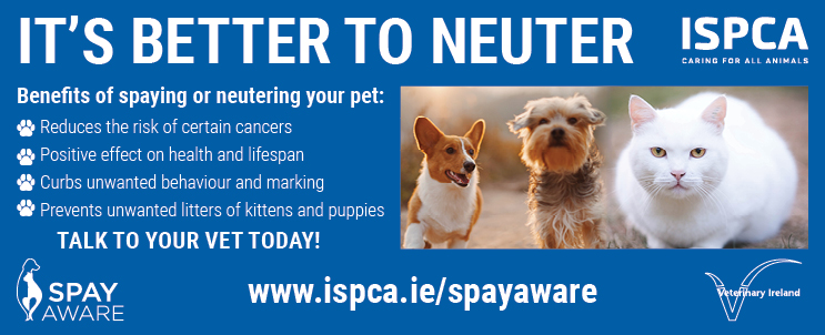 The ISPCA is urging pet owners to spay or neuter their pets as early as possible to reduce the high number of unwanted cats and dogs. The charity is asking the public to consider the positive benefits encouraging pet owners to talk to their vet as soon as possible.